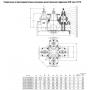Задвижка AVK фланцевая с 4-мя встроенными задвижками COMBI-CROSS DN250 PN10